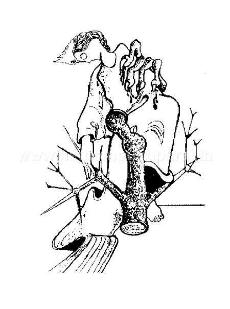 Sketches, രേഖാചിത്രങ്ങള് 2